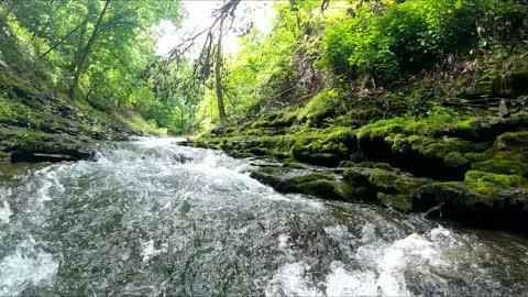 Wild Creek - Ozarks