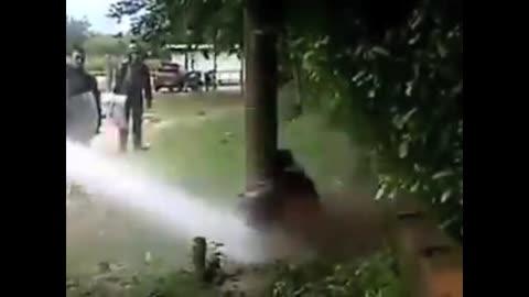 Colombia in guerra civile. La polizia spara e uccide.
