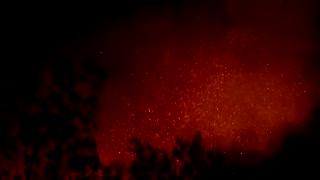 Western Greece wildfire burns through the night