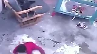 Cat saves baby