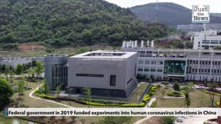 Federal government in 2019 funded experiments into human coronavirus infections in China