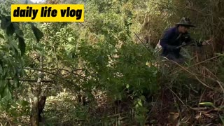 farming life   daily life vlog