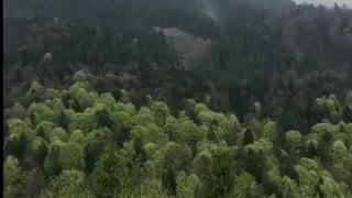 Carpathians Mountains in Ukraine