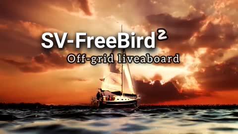 SV FreeBird2