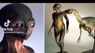 Exposing the reptilian race 2021