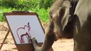 Smart Elephant