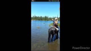 Horse ride Fail