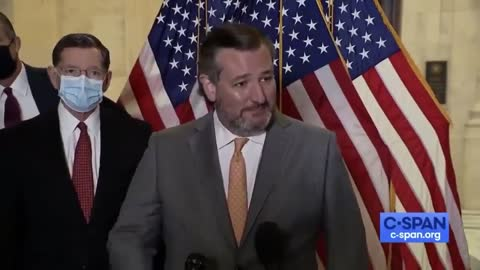 Ted Cruz Tells Reporter That 'He's Welcome To Step Away' After Refusing To Wear a Mask