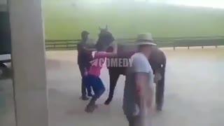 Funny Videos World 6