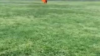 Man on Fire near Washington Monument