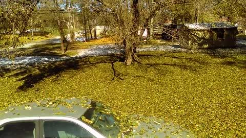 Fall Happens Overnight