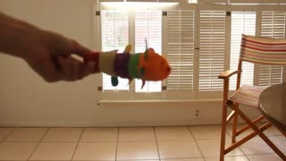 Cutest Kitten Ever Can Fetch - AMAZING