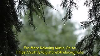 Relaxing Sound of Rain and Music in the Forest