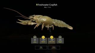 Russian Fishing 4 Sura River Freshwater Crayfish 98g