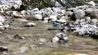 Beauty of nature beautiful Nature
