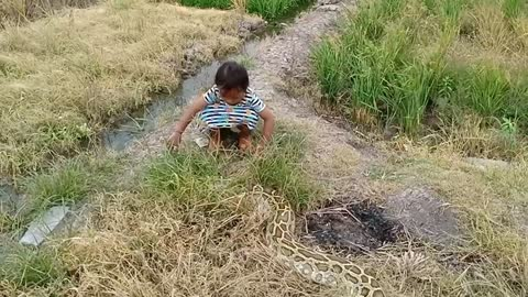Little Girl Fearlessly Plays With A Python