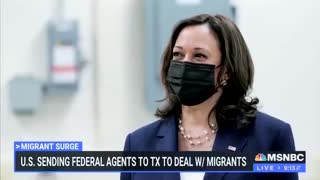 MSNBC On Biden's Border Crisis: Where Is Our Vice President?