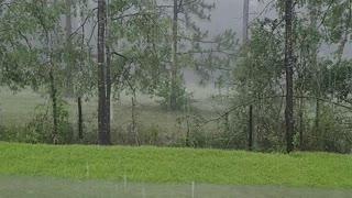 FLA - Tropical Storm Claudette V1