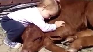 Animals With Great Friendships With Their Owner