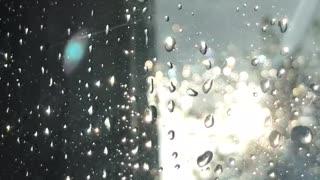 Sounds after rain