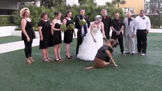 Funniest wedding