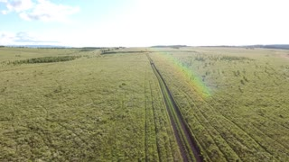 flying a drone through a field