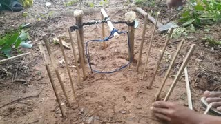 Creative Man Make Primitive Komodo Dragon Trap Using Spanish Windlass Trap To Catch