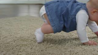 Cutie Crawling viral video