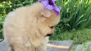 Isn't my little angel so cute