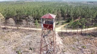 Wallace Fire Tower