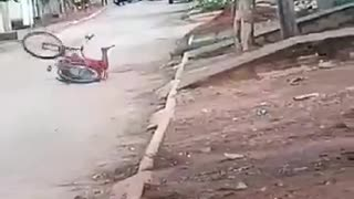 funny videos concerts the prefect road