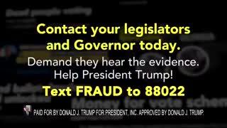 Georgia Election Fraud Evidence