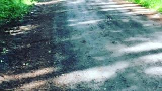 Epic Dirt Bike Crash