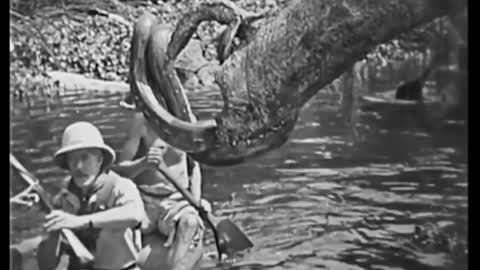 """""""The Lost World"""" (1925)"""