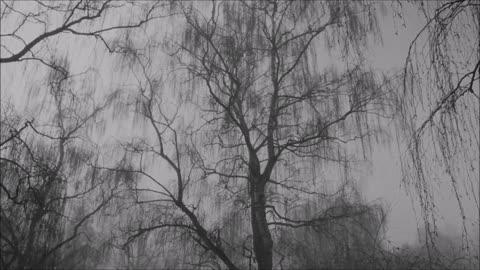 """""""All is Dust"""" - folk blues"""