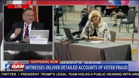 Arizona Voter Fraud From Poll Watcher