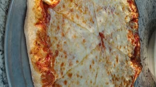 Cheese pizza fly by