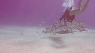 Diving around small reef in the middle of nowhere