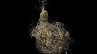 Slow clip of broken beer bottle
