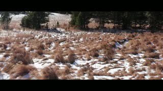 Colorado - Wonderful Nature