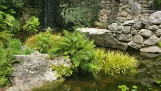 Beautiful waterfall with a great garden