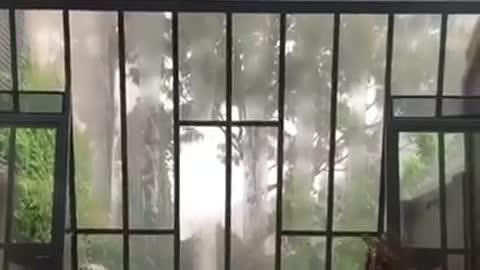 a lover of rain