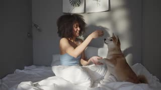 Dog playing with women