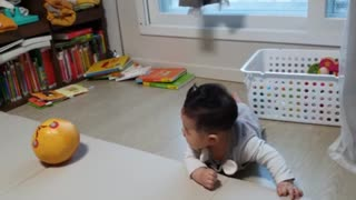 Baby playing with a ball(7 months old)