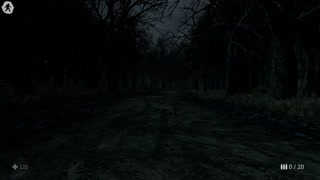 Witch Hunt, pt.1, Playthrough