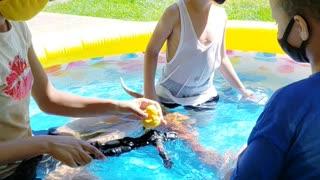 Hot 🔥 summer Day.