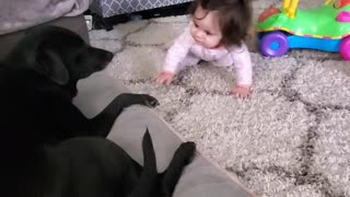Baby looking for dog kisses