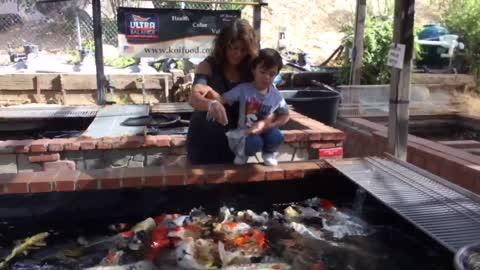 Feeding fish.
