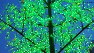 Beautiful christmas tree in winter.