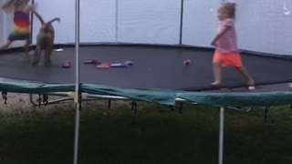 Trampoline Fun With Scooby and friends